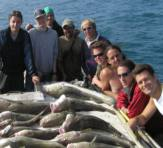 Sea Fishing group with loads of fish they caught