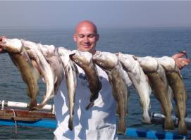 String Of Cod Successes Continues ...
